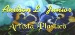 Anilson Lima - Artista Plástico